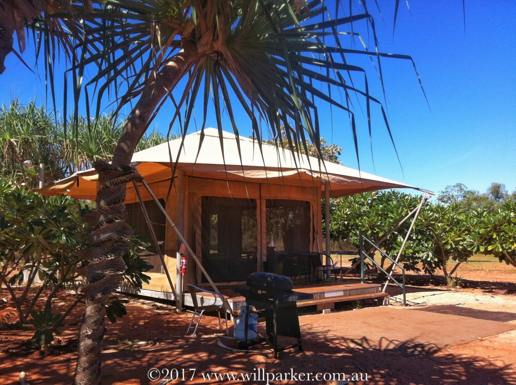 The Gubbinge: Eco Tent Flanked by Pandanus & Frangipanis.