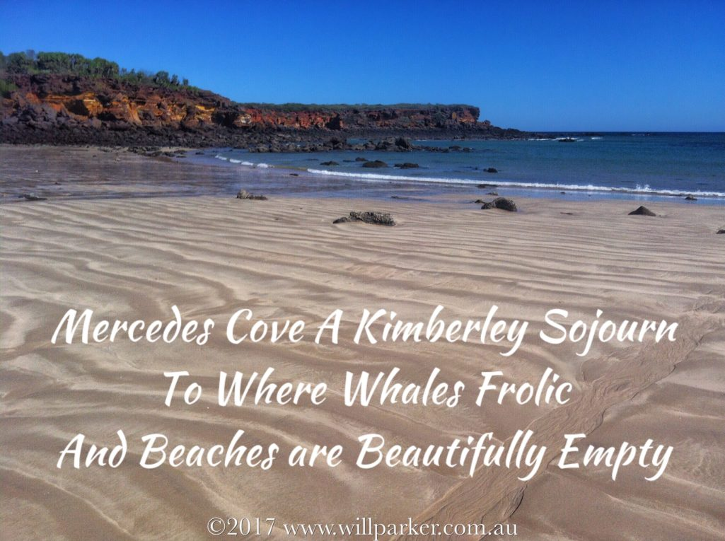 Mercedes Cove A Kimberley Sojourn To Where Whales Frolic & Beaches are Beautifully Empty