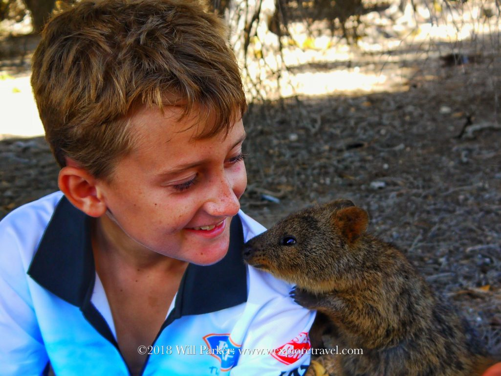 Amazing Rottnest, equisite beaches & Quokka's that delight.